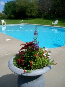 Pine Crest Farms Bed  Breakfast pool