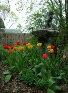 The Lititz House Bed and Breakfast, Beautiful Garden
