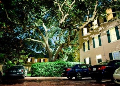 21 East Battery Bed and Breakfast trees