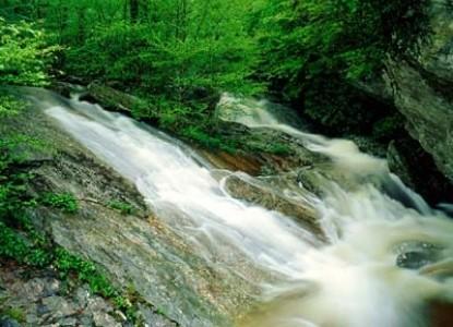 Oak Hill on Love Lane - waterfalls
