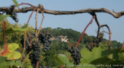 Hermann Hill Vineyard Inn  Spa, Riverbluff Cottages and Wedding Chapel-Grapes