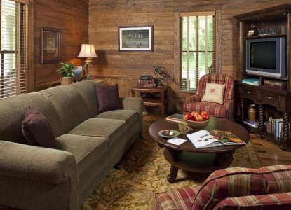 The Buck House Inn on Bald Mountain Creek-Tv