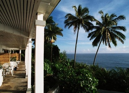 Hale Kai Hawaii Bed & Breakfast palm trees