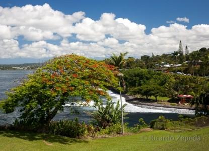 Hale Kai Hawaii Bed & Breakfast clouds