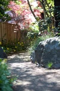 North Berkeley Cottage, garden