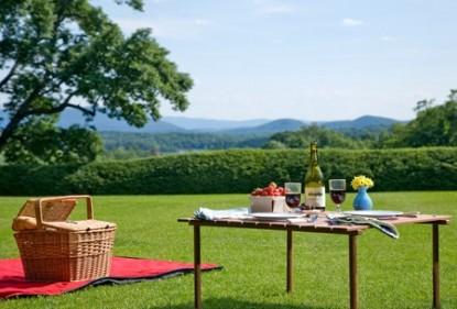 Birchwood Inn, picnic