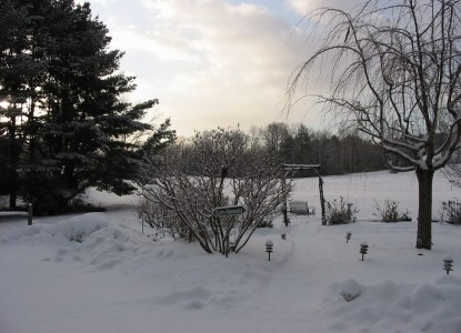 Hickory Ridge House Bed & Breakfast snow