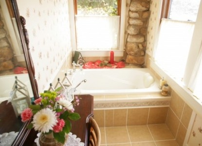 Old Massanutten Lodge Bed and Breakfast bath tub