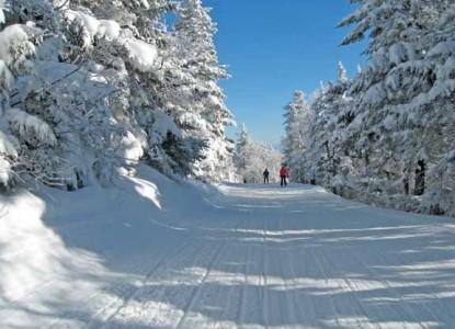 Birch Ridge Inn, winter snow