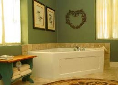 Meyer Bed and Breakfast on Cypress Creek bathtub