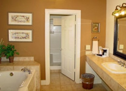 Meyer Bed and Breakfast on Cypress Creek bathroom