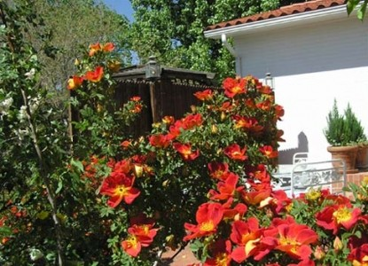 Casa Blanca Bed and Breakfast Inn red and orange flowers