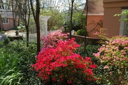 Beaufort House Inn-Flowers
