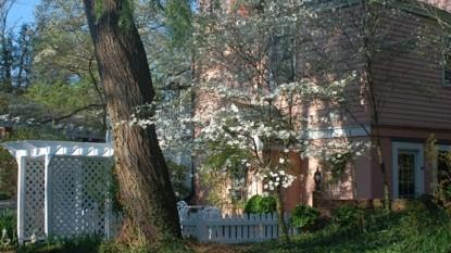 Beaufort House Inn-Tree