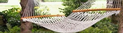 Flowers & Thyme Bed & Breakfast, hammock