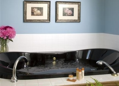 Castle in the Country Bed & Breakfast Inn-Royalty Suite Tub