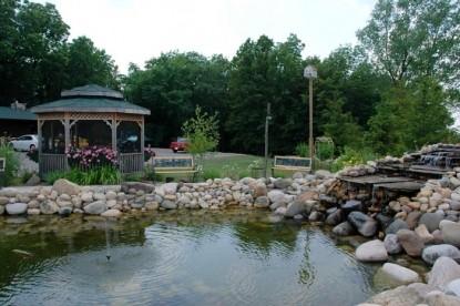 Lazy Cloud Lodge, pond
