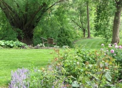 Inn at Blackberry Creek grass