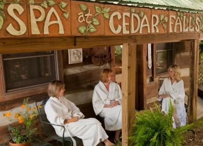 Inn & Spa At Cedar Falls spa
