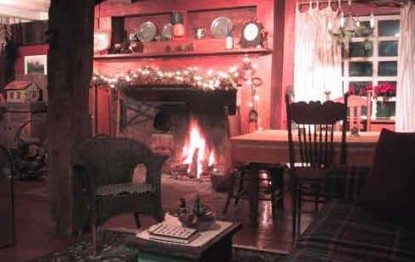 Peppermint Cottage Bed and Breakfast-Fireplace