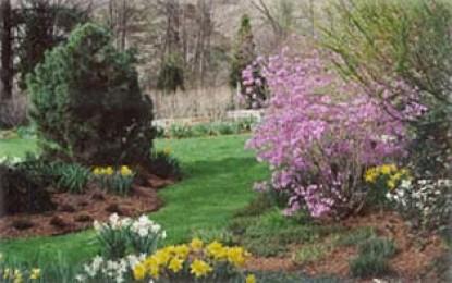 The Hidden Garden's Bed & Breakfast, garden