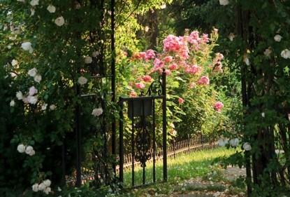 Hamanassett Bed and Breakfast flowers