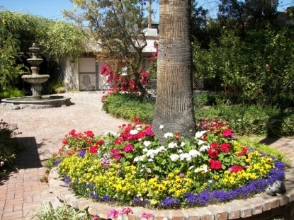 El Presidio Bed and Breakfast Inn, flowers