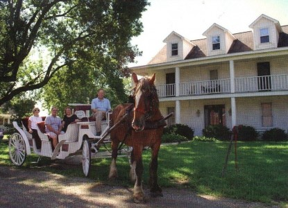 Country Colonial Bed and Breakfast carriage ride