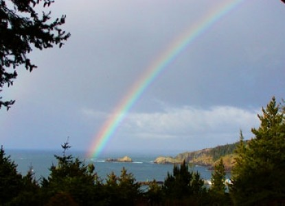 WildSpring Guest Habitat Rainbow