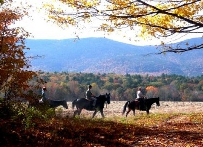 Farm by the River Bed and Breakfast with Stables-Horse back riding