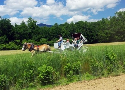 Farm by the River Bed and Breakfast with Stables-White Wagon
