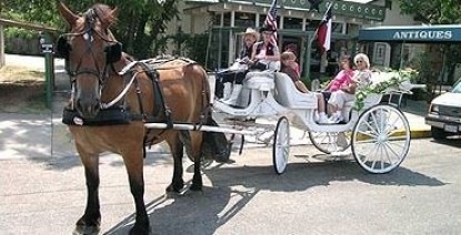 Settlers Crossing Bed and Breakfast Fredericksburg, TX activities