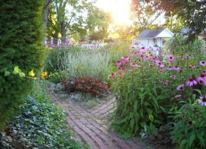 Olde Buffalo Inn Bed & Breakfast, garden
