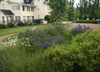 The Windover Inn Bed & Breakfast, garden