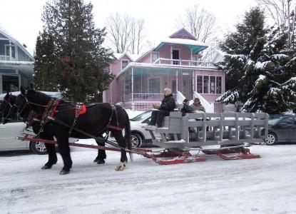 The Terrace Inn & 1911 Restaurant horses