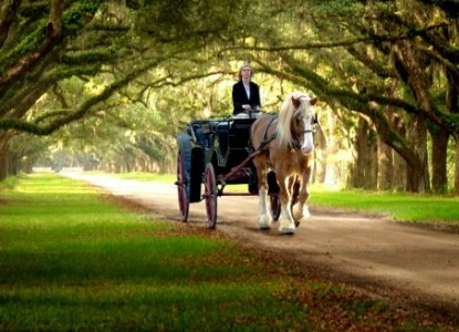 Green Palm Inn-Horse and Carriage