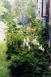 Homeplace Garden