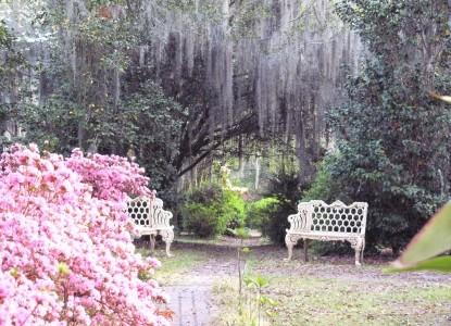 Butler Greenwood Plantation Greenery