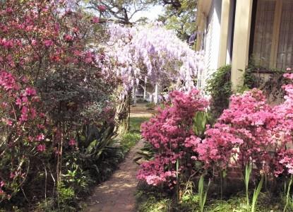 Butler Greenwood Plantation Outdoors