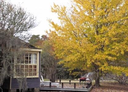 Butler Greenwood Plantation Bird homes