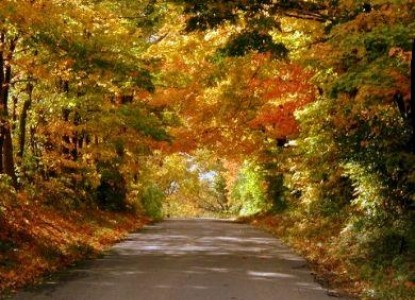 Buckhorn Inn - Gatlinburg, Tennessee - Fall