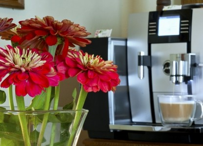 The Pleasant Street Inn Bed & Breakfast-Flowers