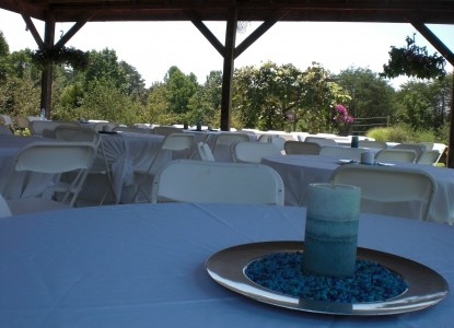 Nolichuckey Bluffs Bed and Breakfast Cabins-wedding tables set