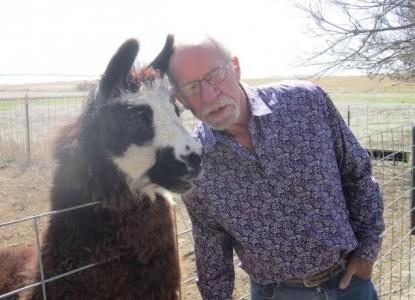 The Shepherds' Inn Bed and Breakfast, Inc. Llama