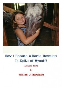 Oak Hill Farm Cabin, Horse Rescue photo