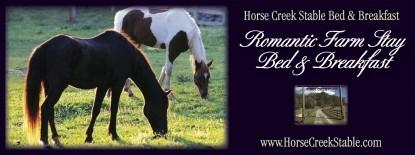 Horse Creek Stable Bed & Breakfast, horses
