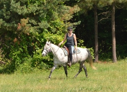 First Farm Horseback