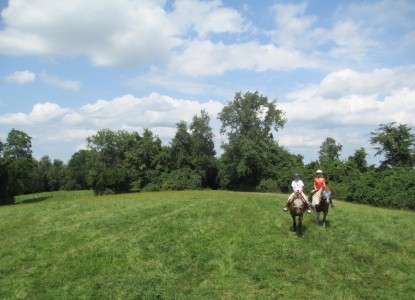First Farm Inn, horses