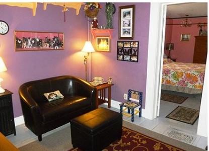 Cat Suite Living Room