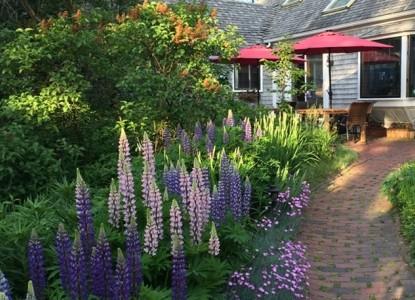 The Morning Glory Inn Brick Path